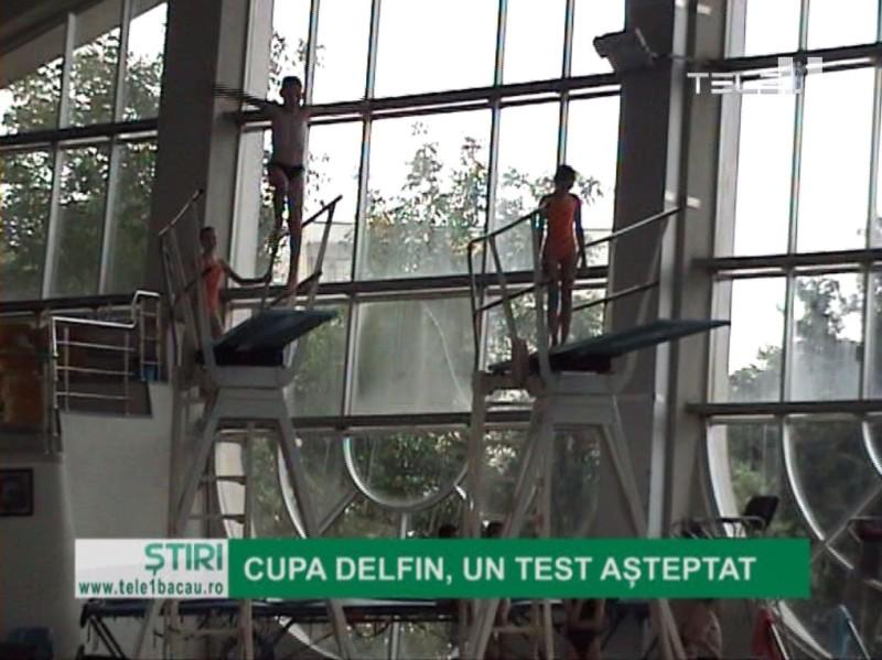 Cupa Delfin, un test așteptat