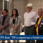 """PNL Bacău: """" PSD se comportă exact ca Partidul Comunist!"""""""